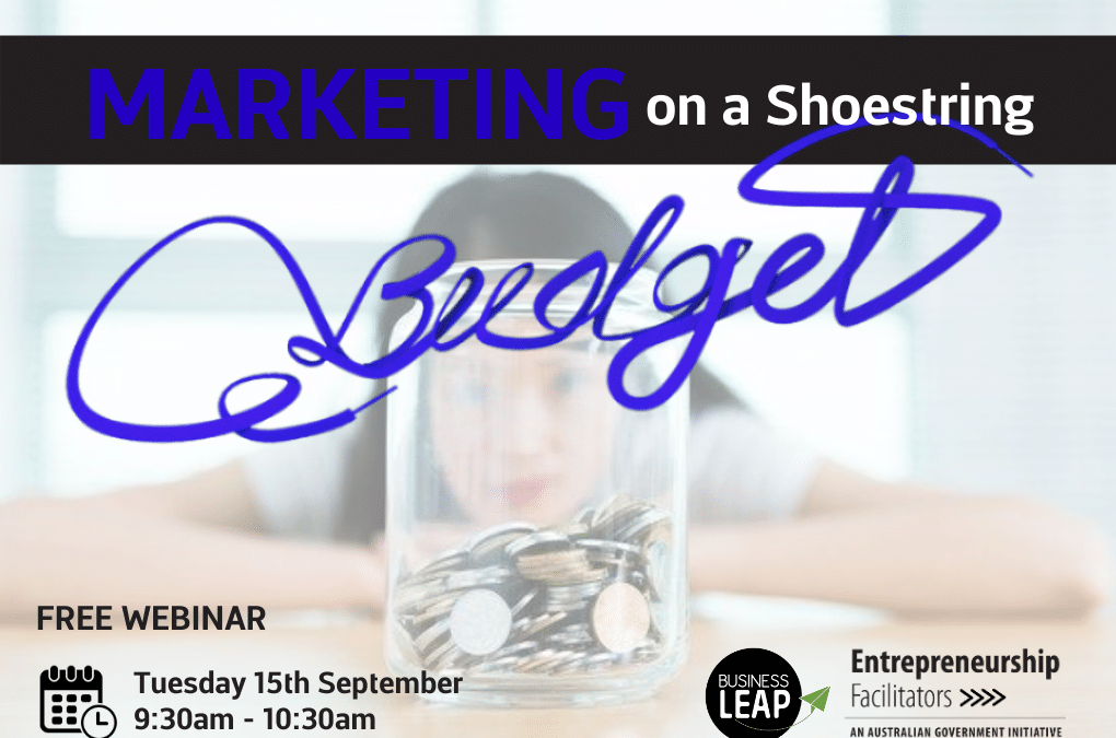 Marketing on a Shoestring Budget Webinar